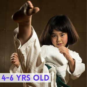 4-6 years old Kids Martial Arts Classes